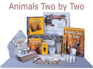 Animals Two By Two Kit