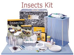 Foss Insects & Plants - Kit
